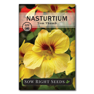 Nasturtium Tom Thumb Mix Seed Packet Front
